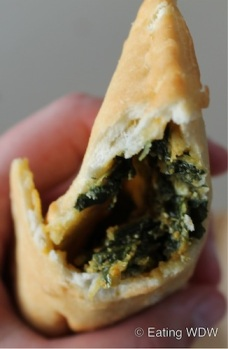 2012-fw-south-africa-spinach-and-paneer-cheese-pocket-close