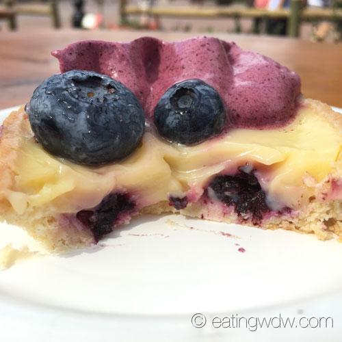 2015-flower-garden-florida-fresh-florida-blueberry-and-lemon-curd-tart-3