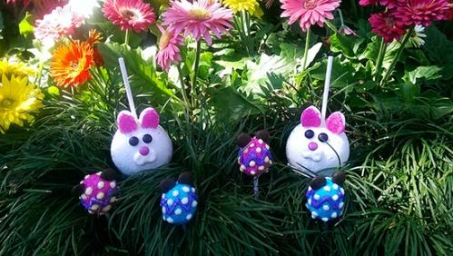 disneyland-bunny-apples-egg-shaped-cake-pops