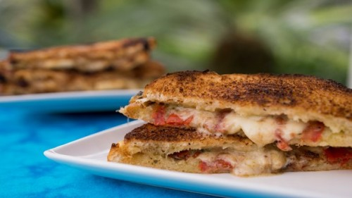 taste-track-fontina-and-tomato-basil-grilled-cheese-sandwich